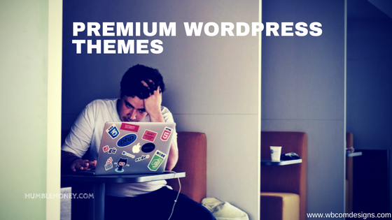 Why Premium WordPress Themes Are a Blessing for Developers
