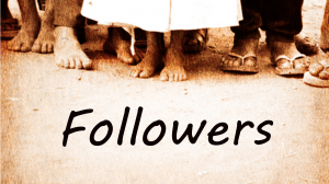 Efficient Identification and Growth of WordPress Followers