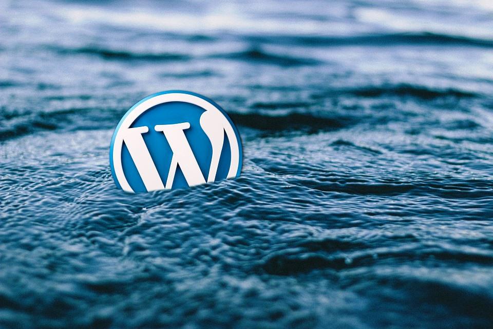 WordPress Theme tips for beginners