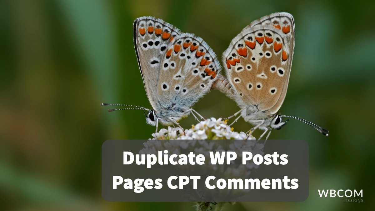 Duplicate WP Posts Pages CPT Comments