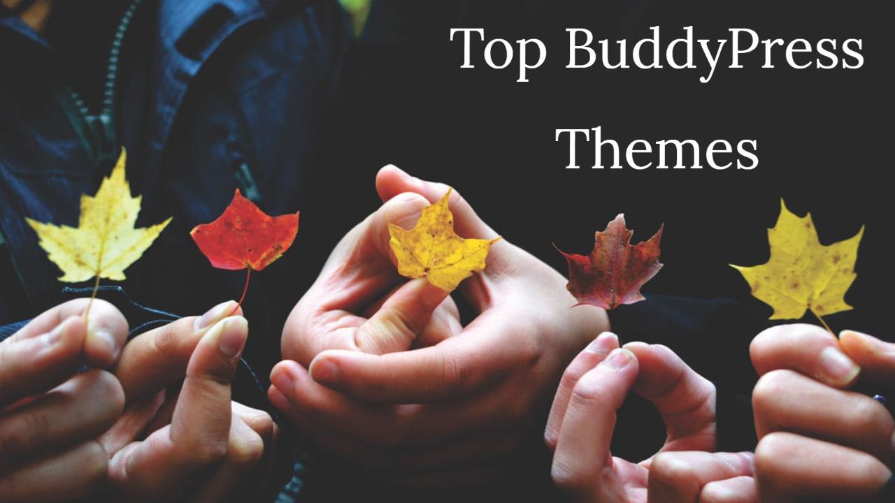 Top 6 WordPress BuddyPress Themes In 2020