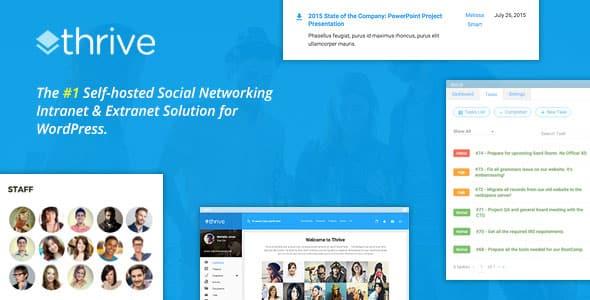 Thrive v1.8.6 Intranet Community WordPress Theme