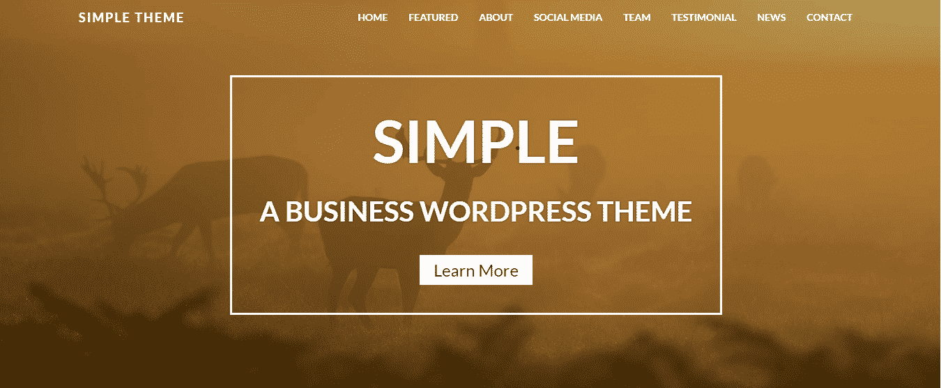 Appropriate wordpress theme - in simple way