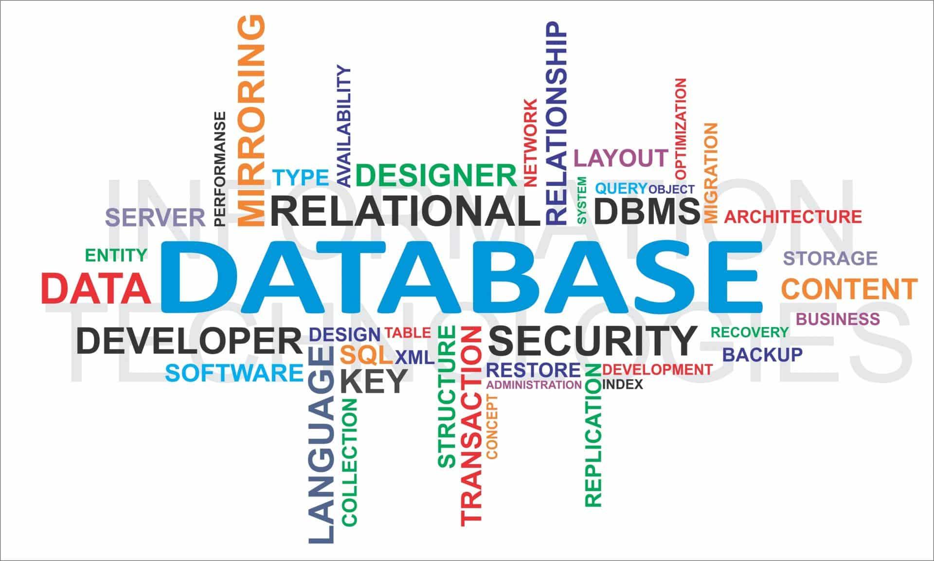 WordPress Automation - database
