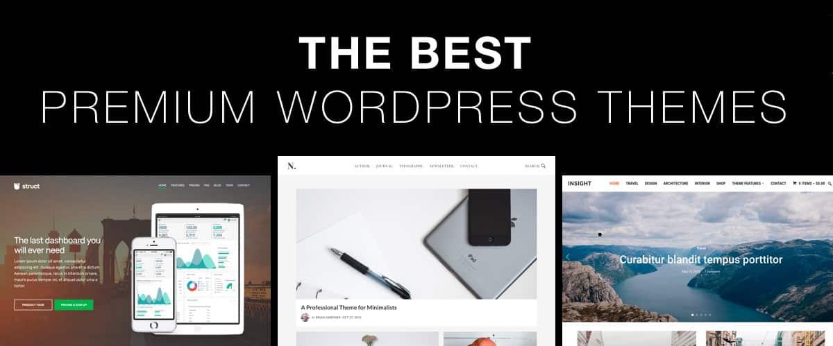 the best premium wordpress themes 2