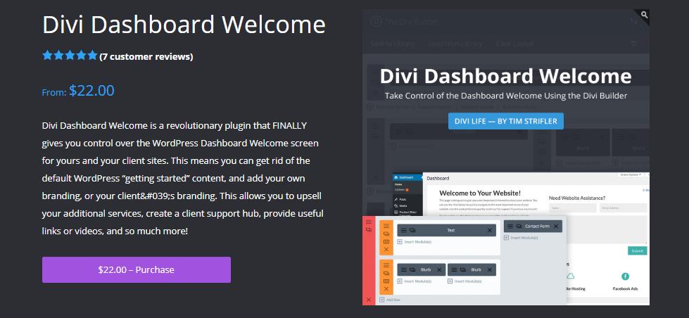 WordPress divi plugin