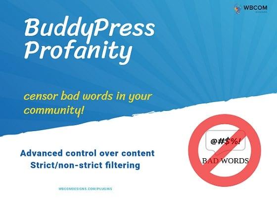 BuddyPress Profanity Copy