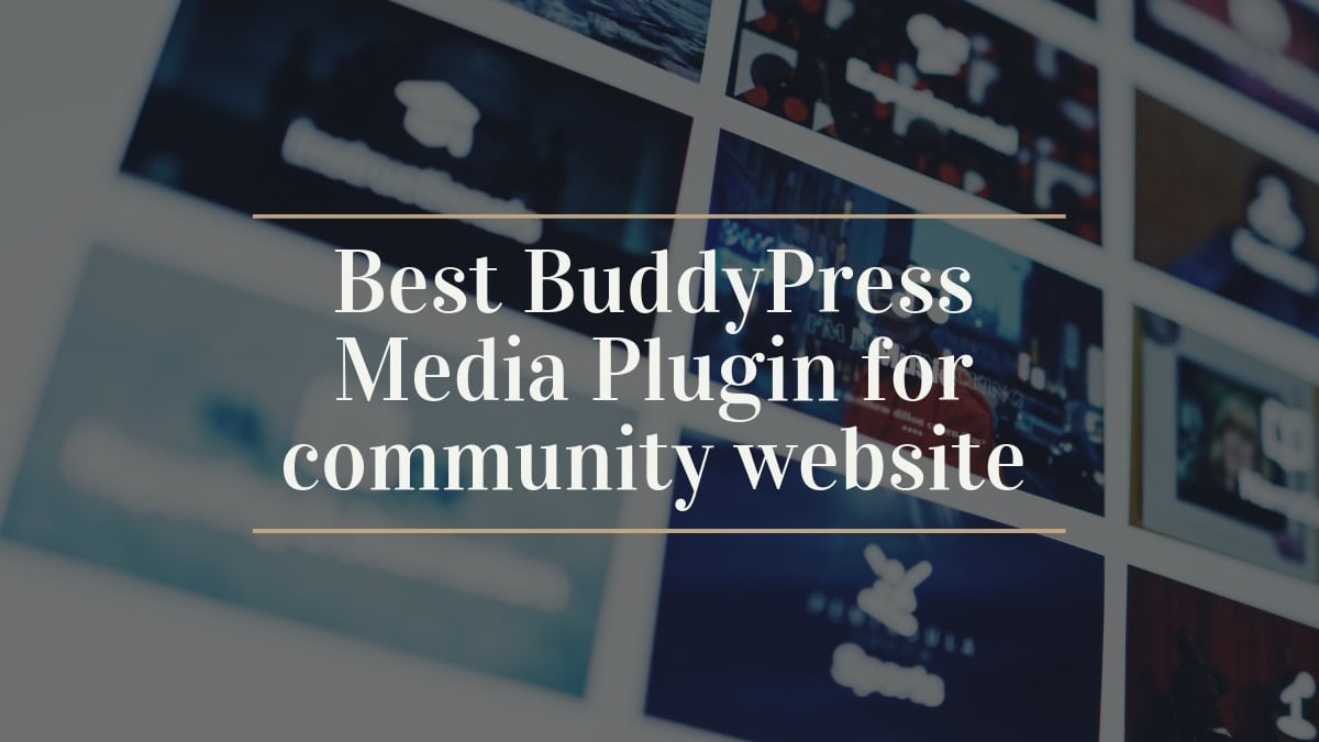 BuddyPress Media Plugin