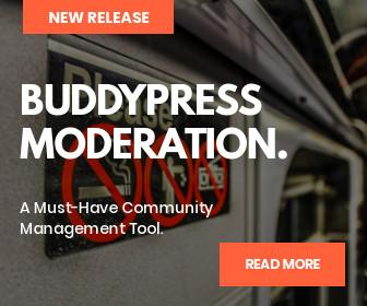 BuddyPress Moderation