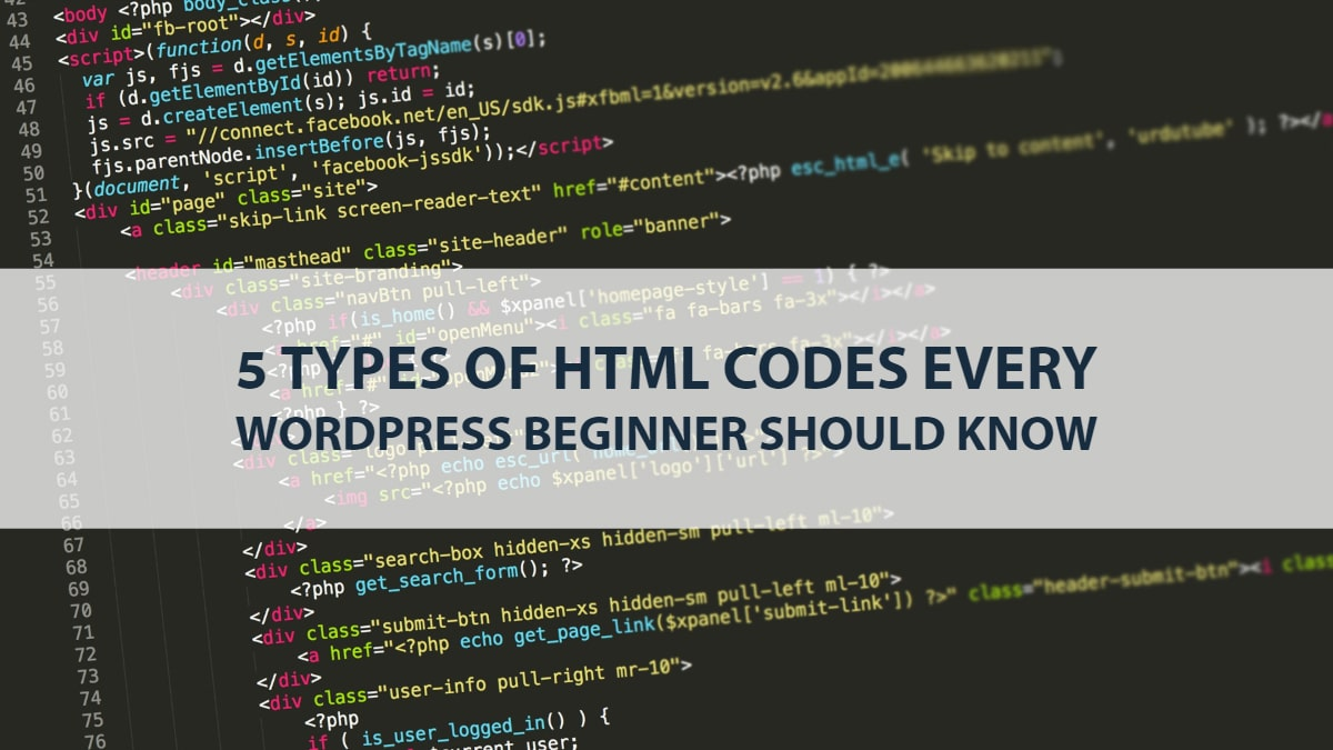 HTML codes every WordPress beginner should know 1