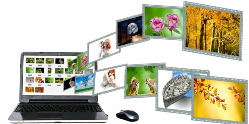 WordPress different image type