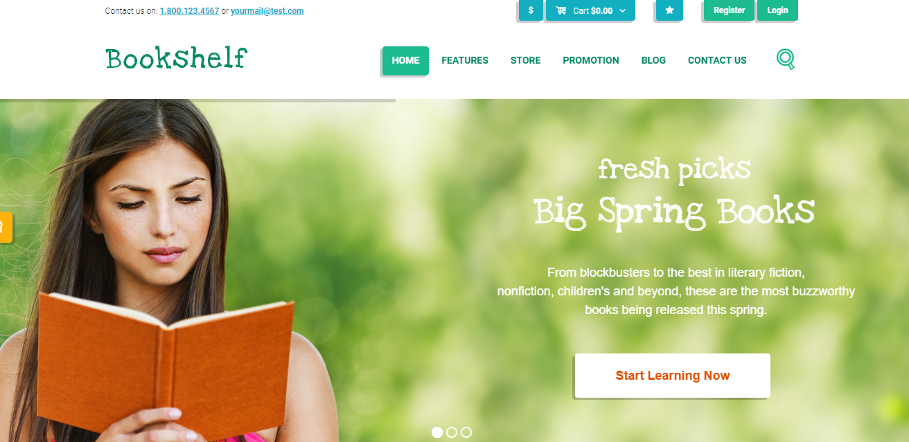 WordPress LearnDash Themes