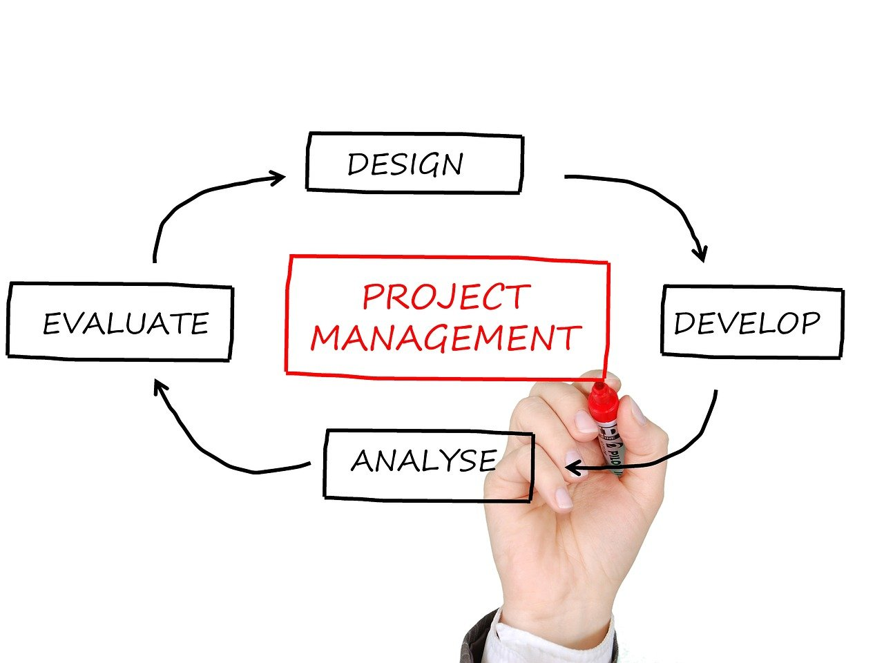 Web Development Project Manager