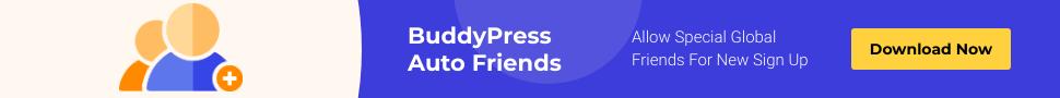 BuddyPress Auto Friends