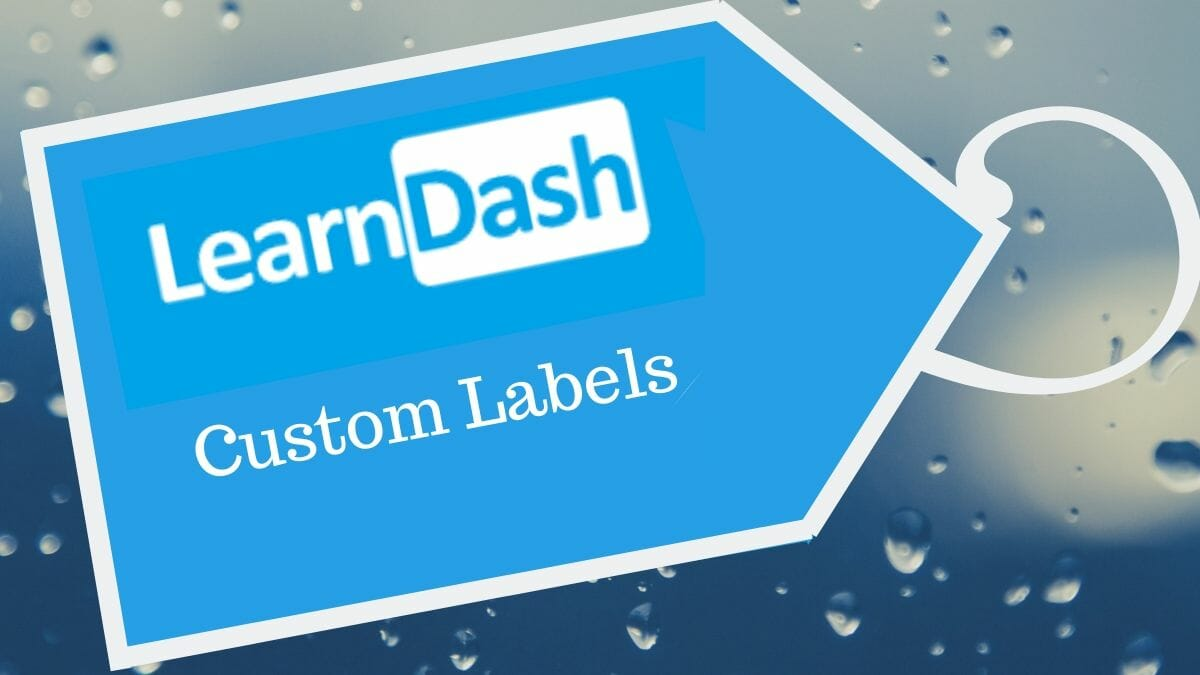 How to customize custom labels in LearnDash