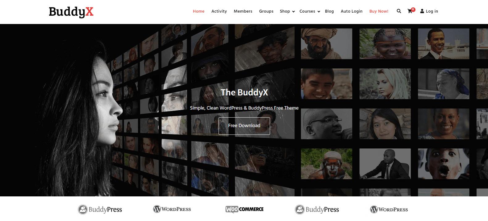 buddyx-theme