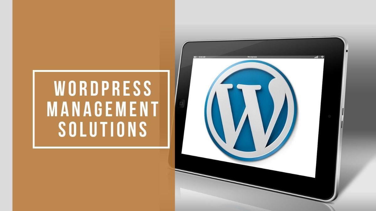 WordPress Management Solutions