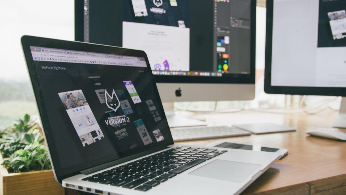 premium and free wordpress themes
