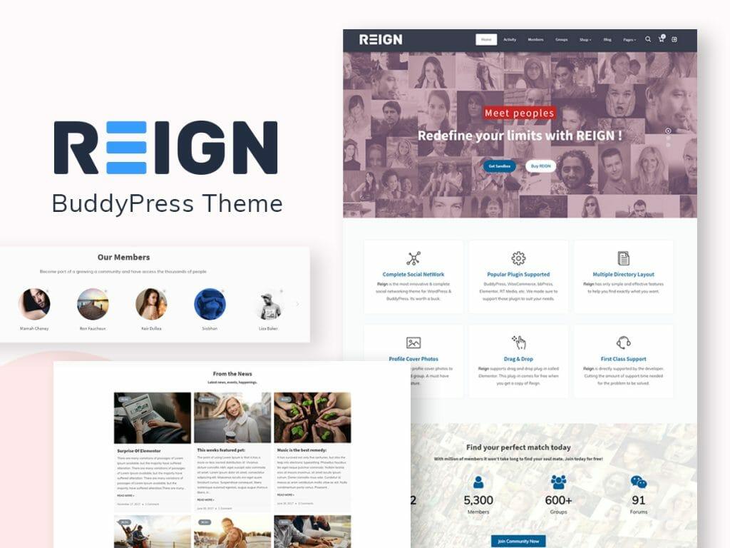 BuddyPress Theme, Ning Alternatives