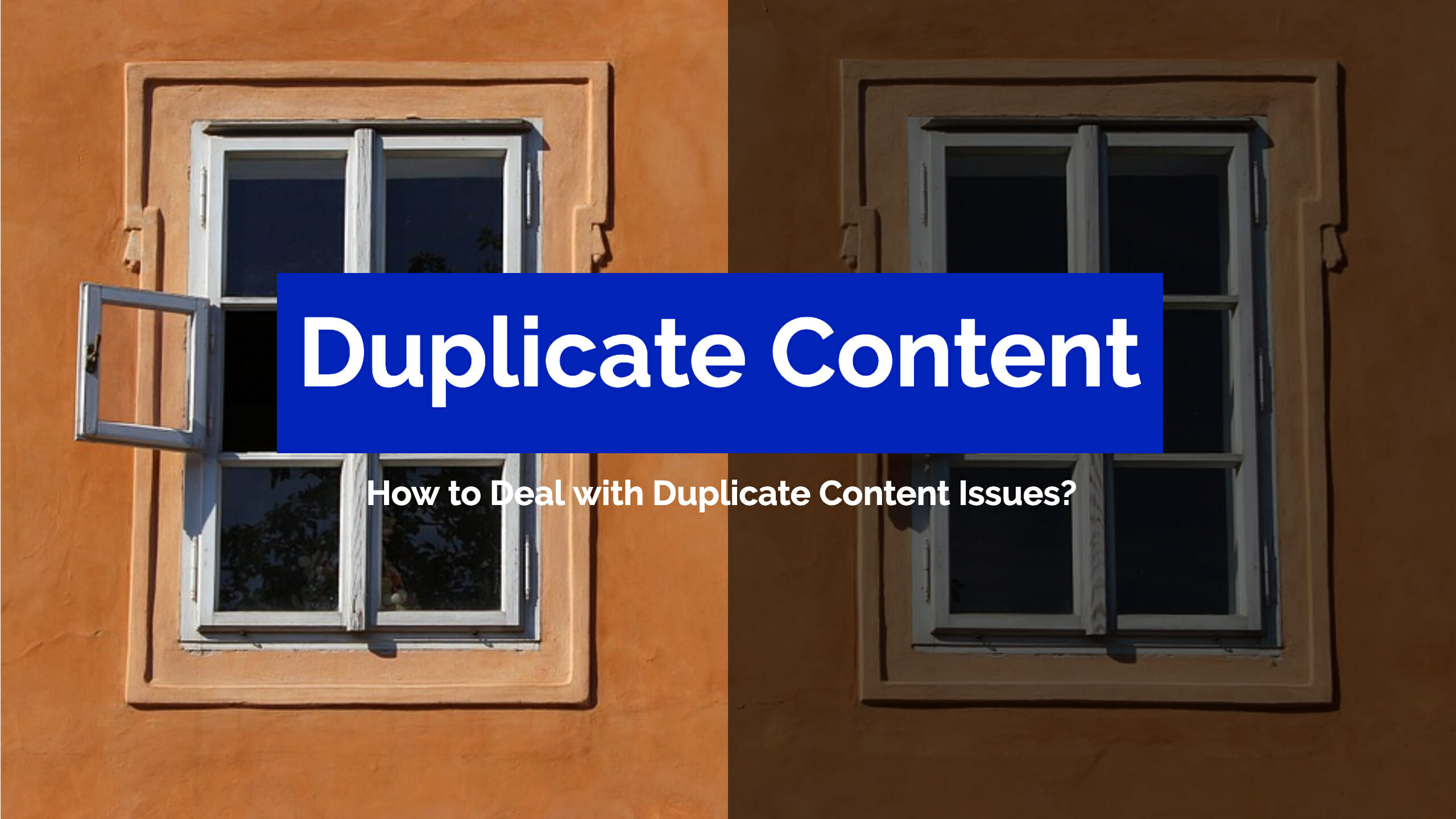 Duplicate Content Issues