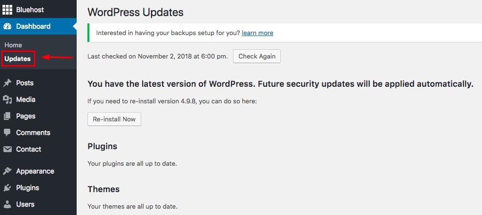 Securing Your WordPress Website