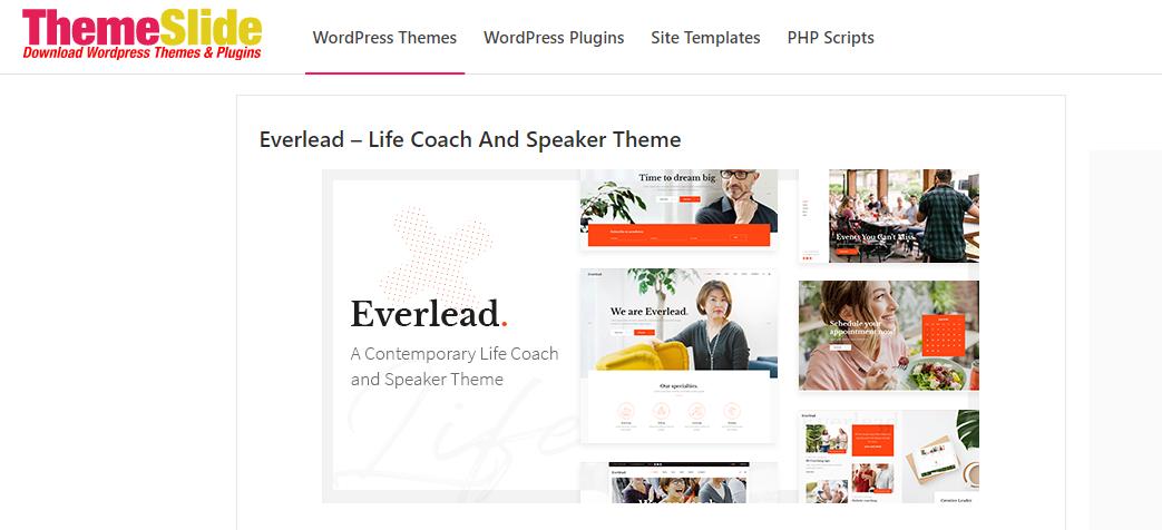 Everlead WordPress theme