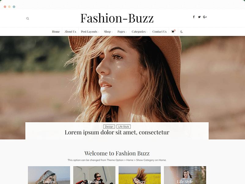 Fashion Buzz Fashion WordPress Theme Review