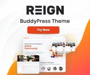 New BuddyPress Theme