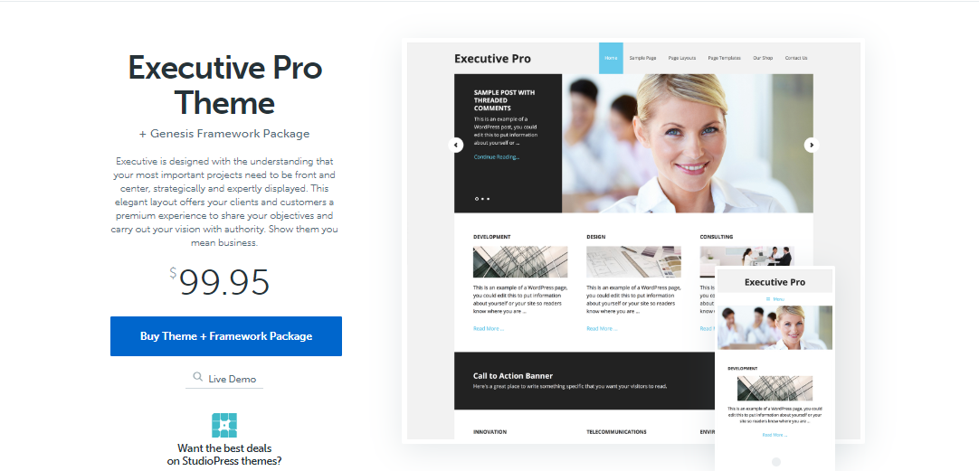 executive pro Insurance WordPress Themes