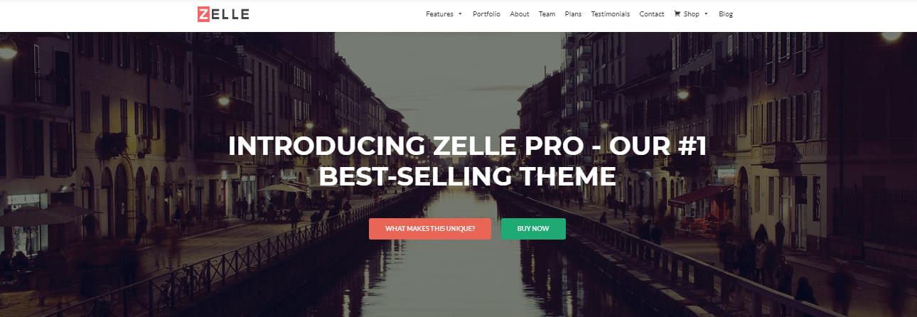 zelle pro wordpress themes
