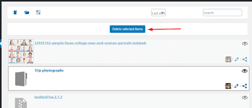 BuddyDrive Plugin Review
