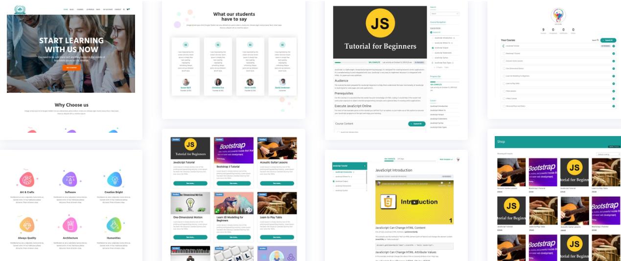 WordPress LearnDash Theme