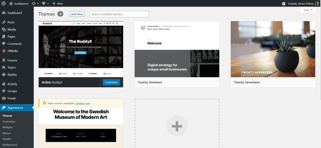 Manage_Themes_‹_buddypress_—_WordPress
