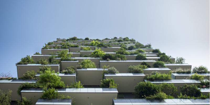 Green Living Blog
