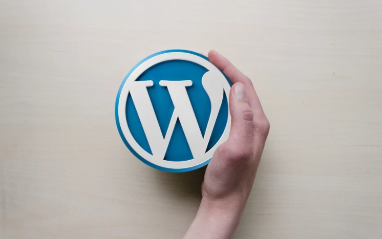 Tribe or WordPress for Creating a Social Network