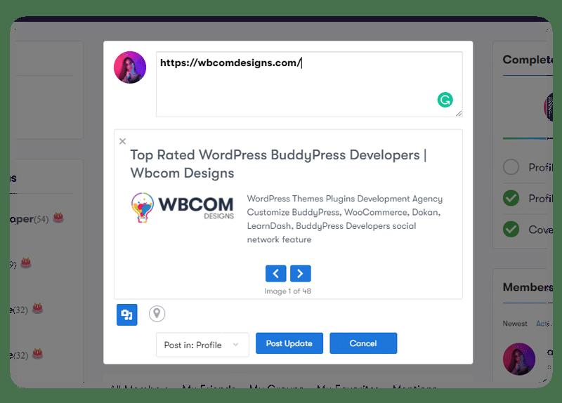 Link Preview 1 - Wbcom Designs