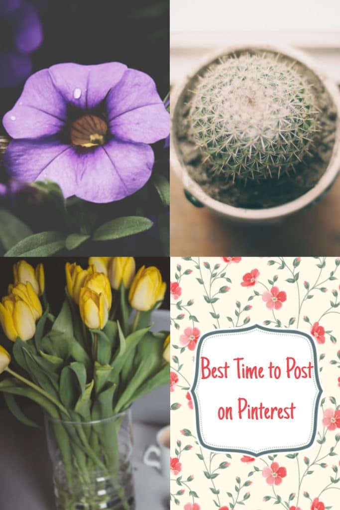 Post on Pinterest