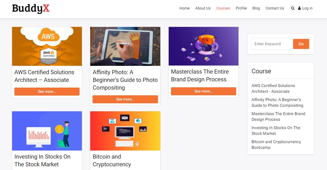BuddyX eLearning Websites