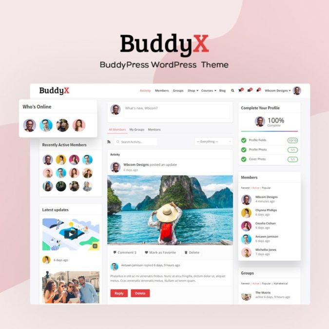 WordPress Social Network Theme